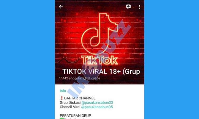 15 Link Channel Grup Telegram Tiktok Viral 2021 Mencari Join